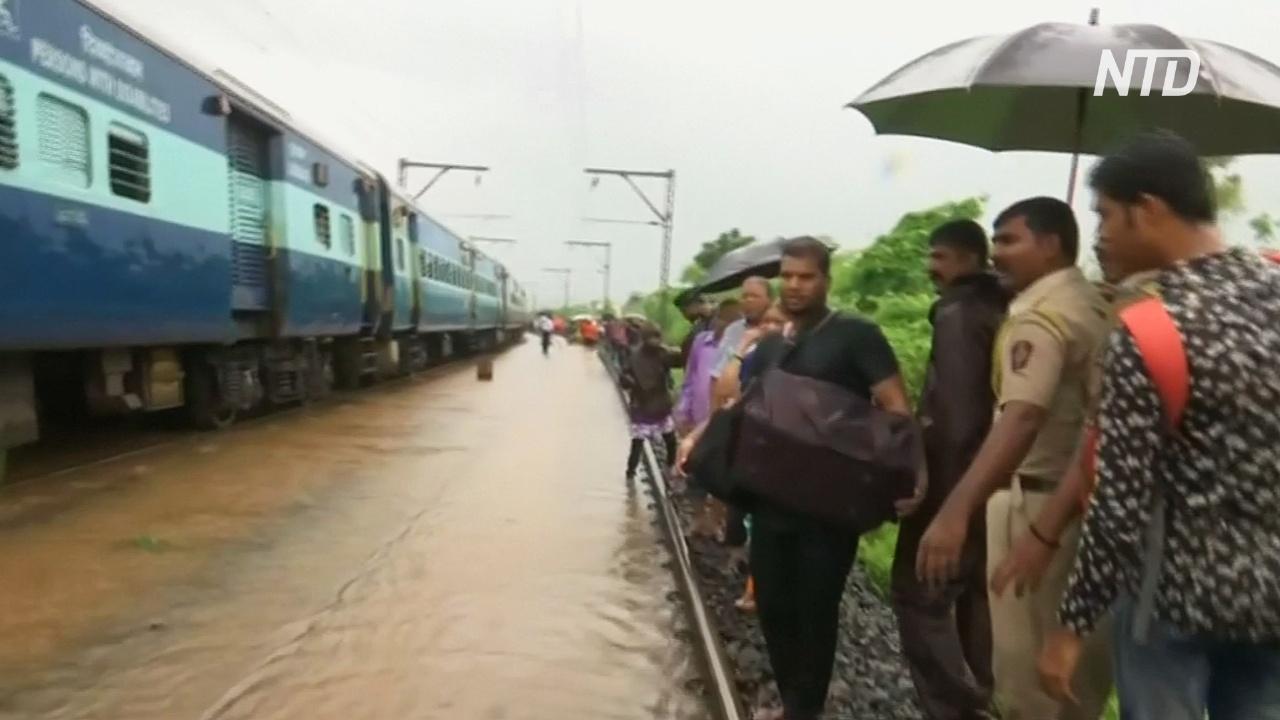 Наводнения в Индии добрались до засушливого Раджастхана