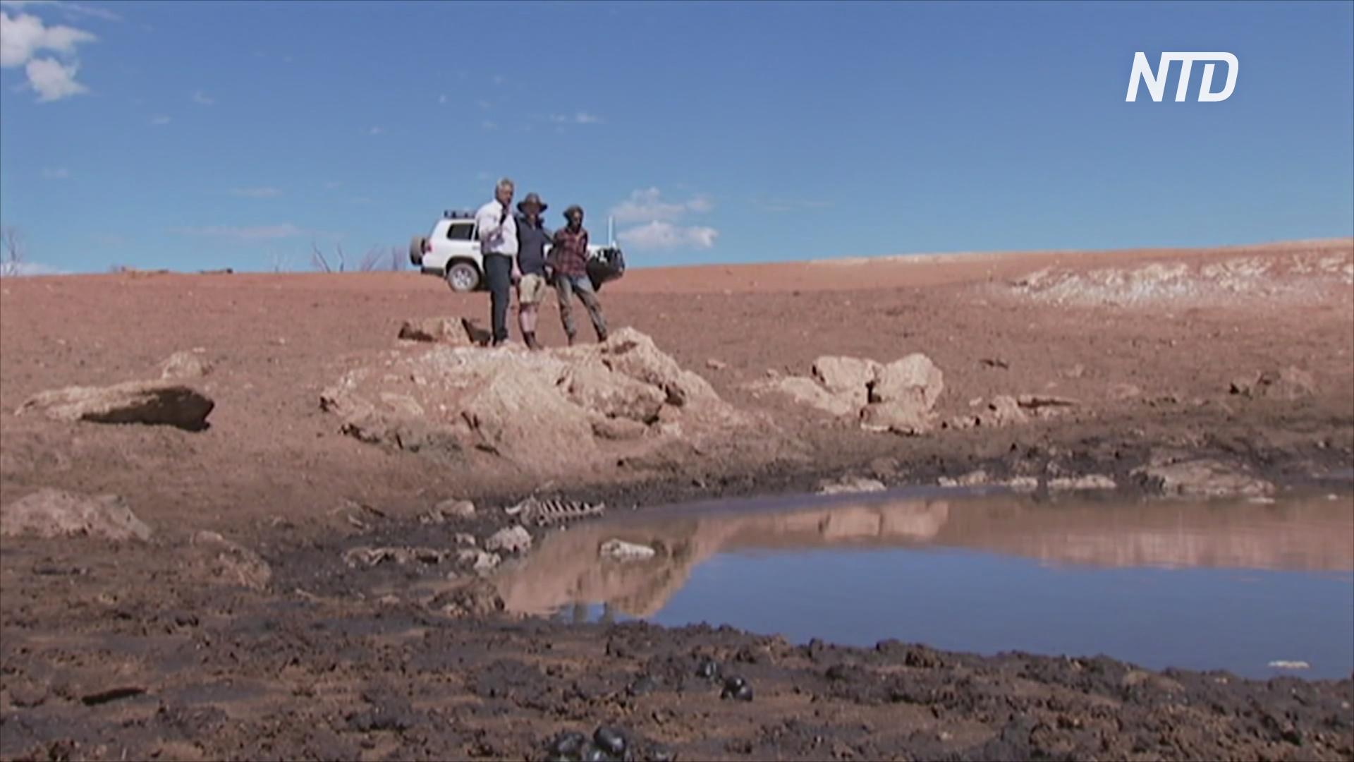 Австралия: в пустыне обнаружили древний источник воды аборигенов