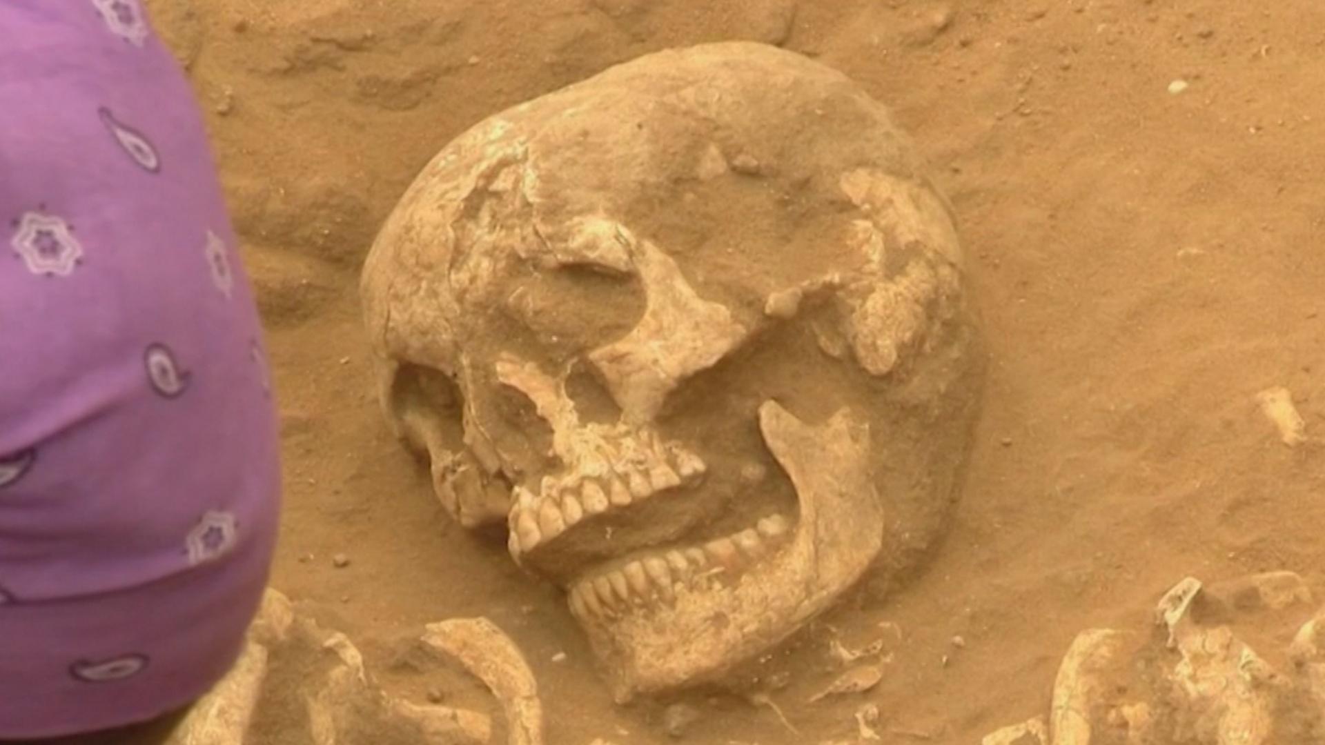 Учёные выяснили, что древние филистимляне пришли из Европы
