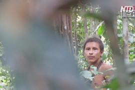 Членов изолированного племени в Бразилии удалось заснять на видео