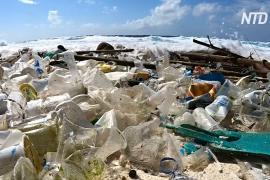 Сколько пластика использует в день обычная индонезийская семья?