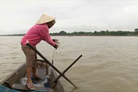 Тайские рыбаки на реке Меконг жалуются на скудный улов и подозревают китайские дамбы