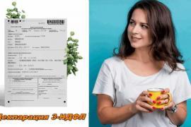 С сайтом filego.ru – заполнить налоговую декларацию так просто