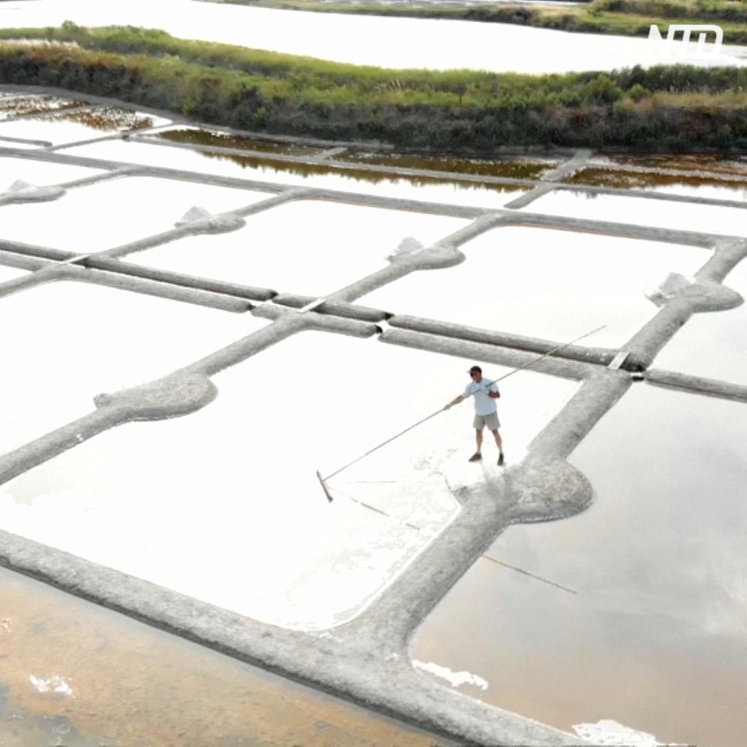 Где добывают самую дорогую соль в мире