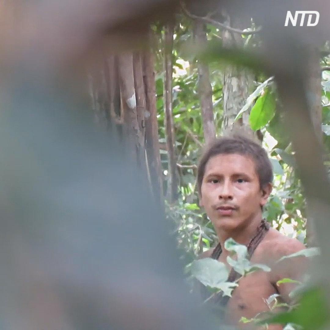 Бразильского аборигена из изолированного племени сняли на видео