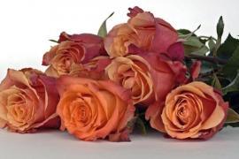 Сервис доставки цветов в Екатеринбург