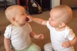 Битва близнецов за пустышку набрала 33 млн просмотров