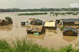 Шквальный ливень унёс жизни не менее 12 человек в Индии