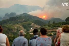 Пожар на Канарских островах: эвакуировано 9000 человек