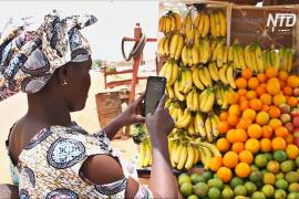 В Мали создали приложение для неграмотных