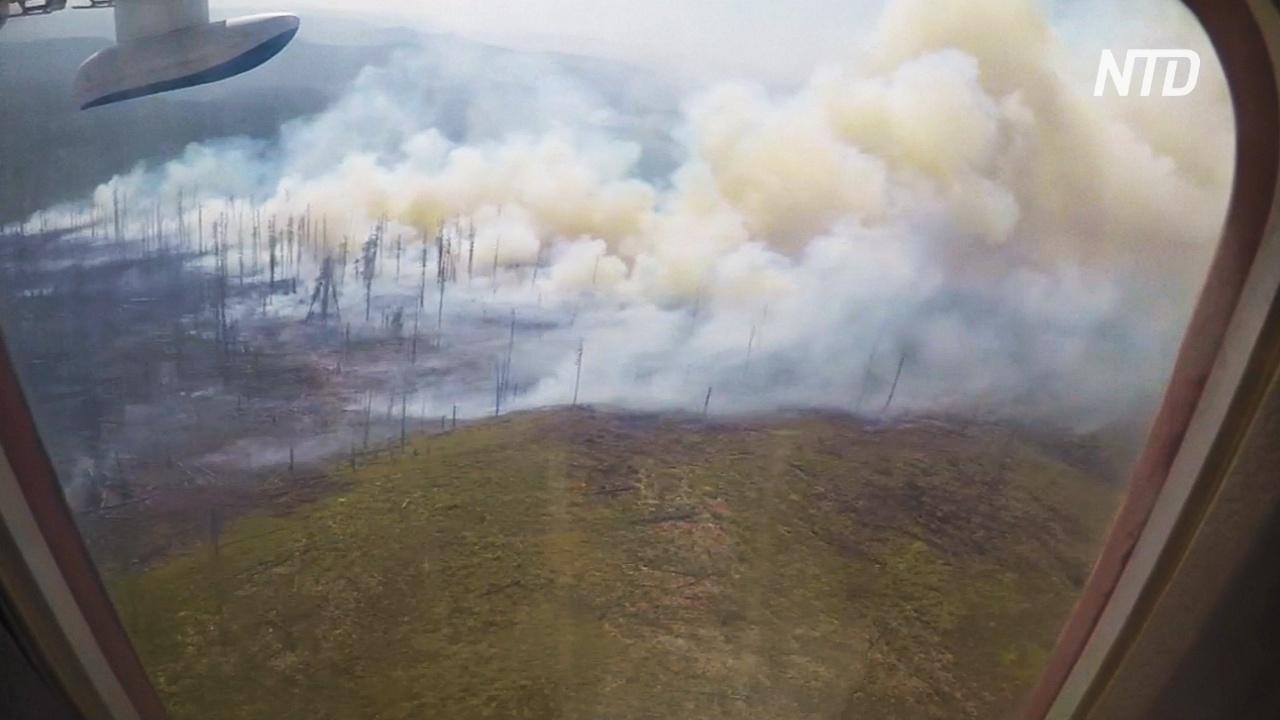 Генпрокуратура сообщила о преднамеренных поджогах лесов в Сибири