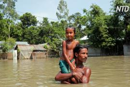 Наводнения в Индии пошли на спад, но людям некуда возвращаться