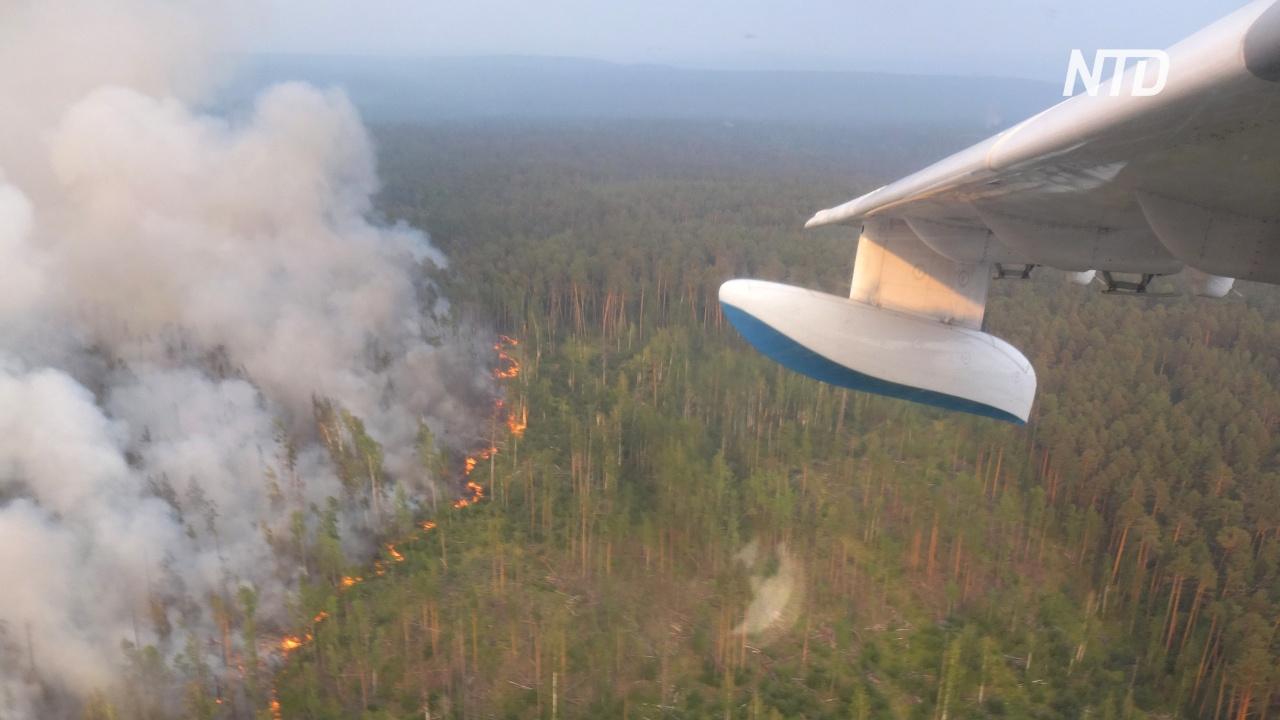 Власти России проверят, не создали ли пожары в Сибири умышленно