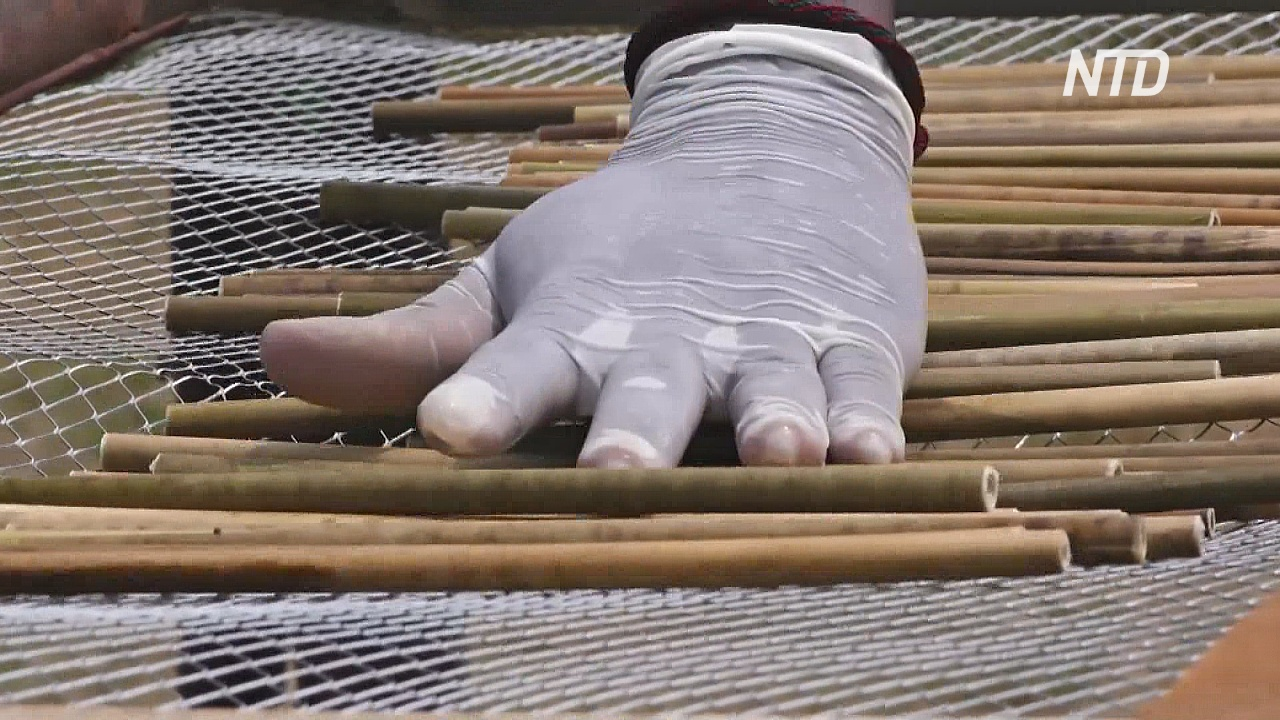 Трубочки из соломы: угандиец спасает природу от пластика
