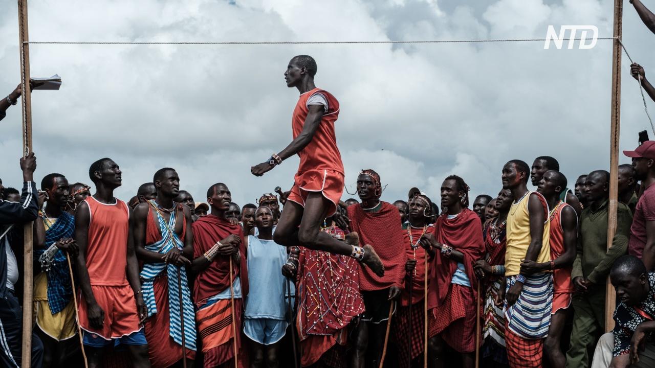 Редкий обряд: как масаи посвящают младших воинов в старшие