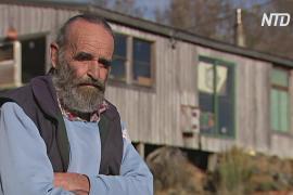 Зимняя изоляция: как жители Тасмании выживают в холода