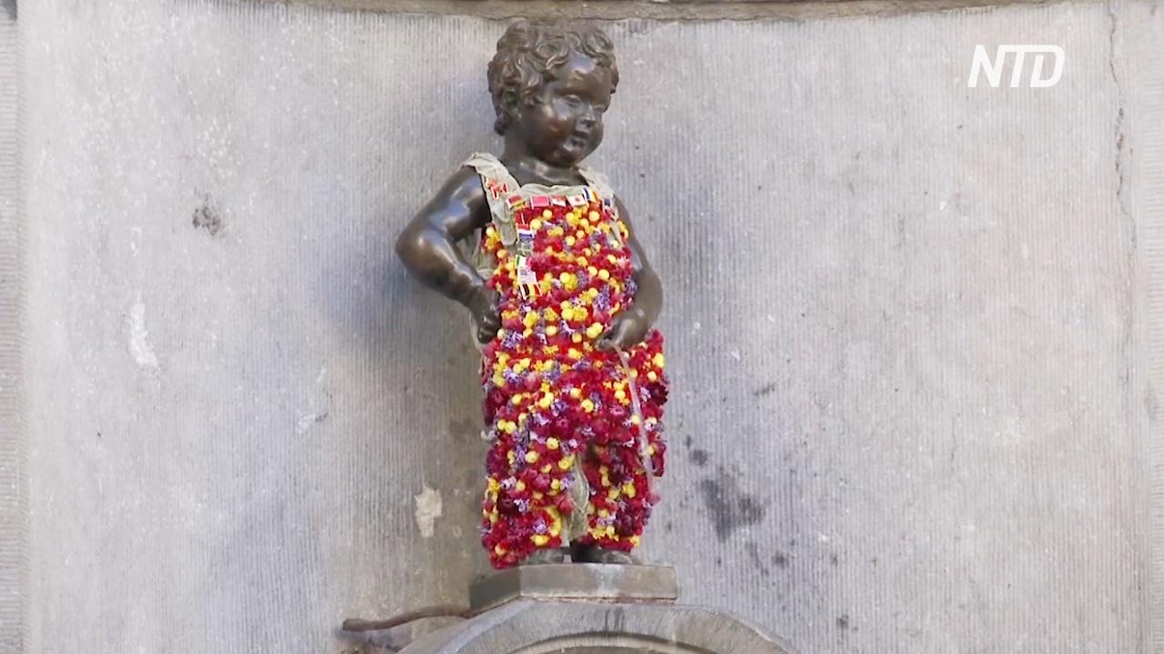На Гран-плас в Брюсселе создают цветочные композиции