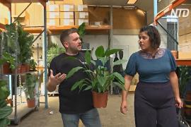 Отель для растений открылся в Лондоне