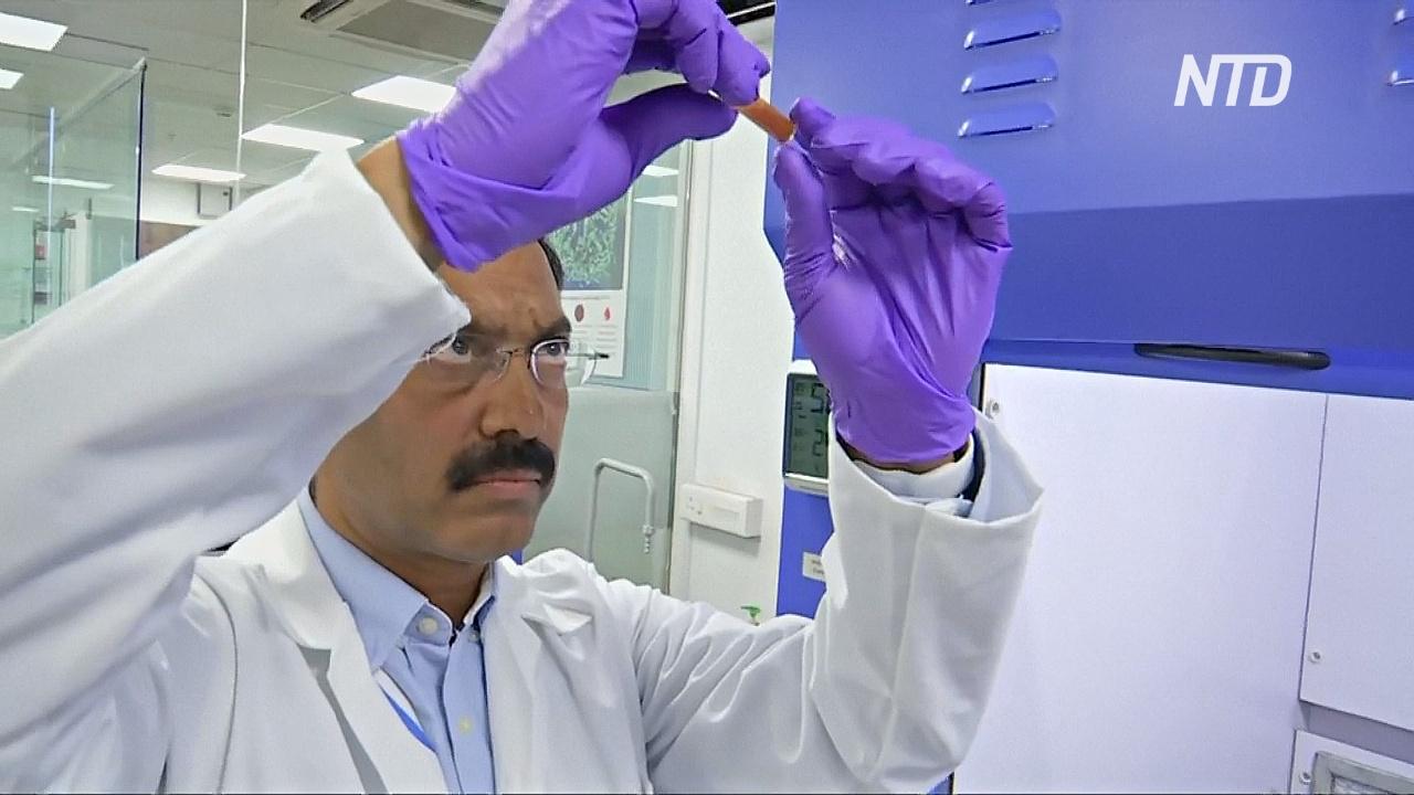 Индийские учёные научились обнаруживать рак на ранних стадиях