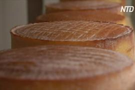 У австралийцев меняются вкусы: они едят больше эксклюзивного сыра