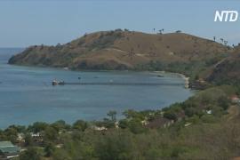 Закрытие острова Комодо: местные жители недовольны
