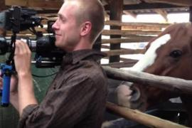 Игривая лошадь пристаёт к оператору во время съёмки. Смешное видео.