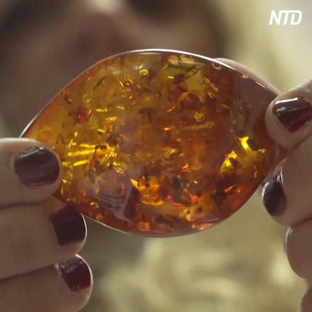 В доисторические времена тоже подделывали янтарь