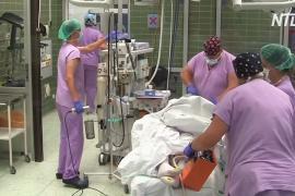 Чешские врачи вырастили ребёнка в утробе умершей матери