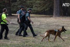 В испанских горах нашли тело олимпийской медалистки