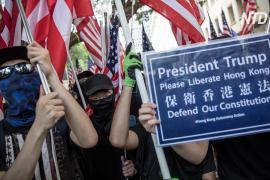 Протестующие призвали Дональда Трампа помочь освободить Гонконг