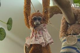 Букингемский дворец вернул игрушку ребёнку из Австралии