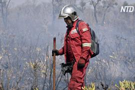 В Боливии пожарные падают в обмороки от изнеможения