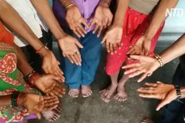 25 родственников с многопалостью: индийская семья привлекает туристов