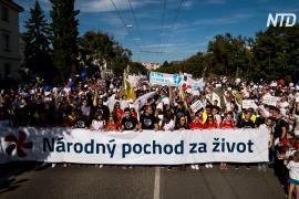 Десятки тысяч словаков вышли на марш против абортов