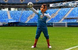 Санкт-Петербург примет финал Лиги чемпионов УЕФА-2020/21