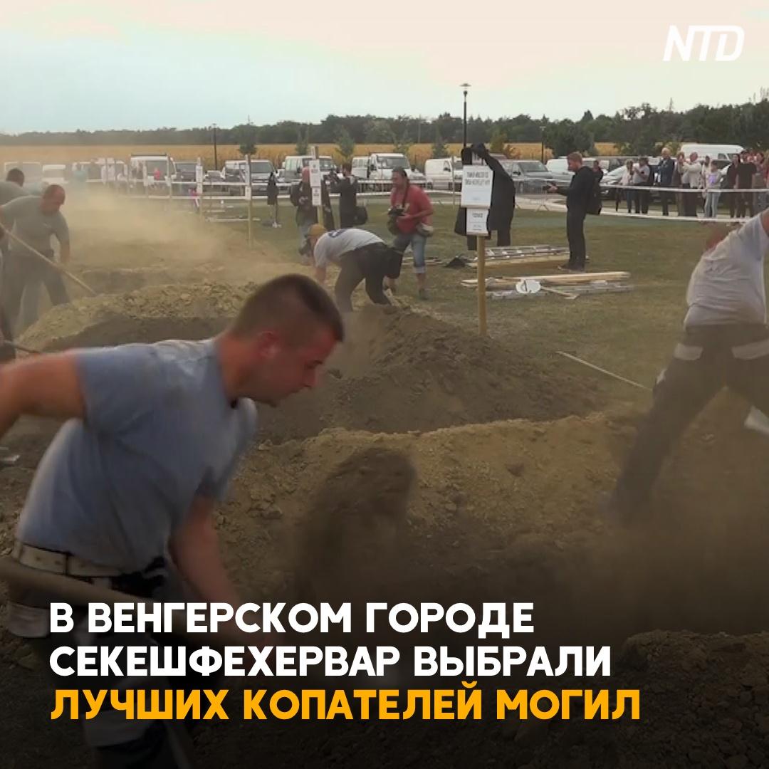 В Венгрии выбрали лучших копателей могил