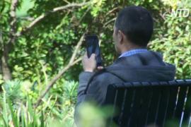 В Тасмании появятся зоны без машин и телефонной связи