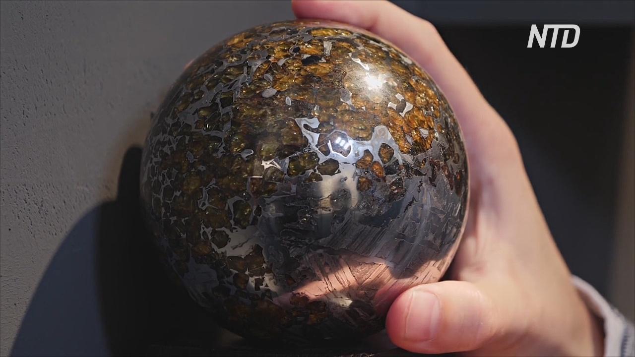 На выставке в Лондоне показали 4,5 млрд лет истории