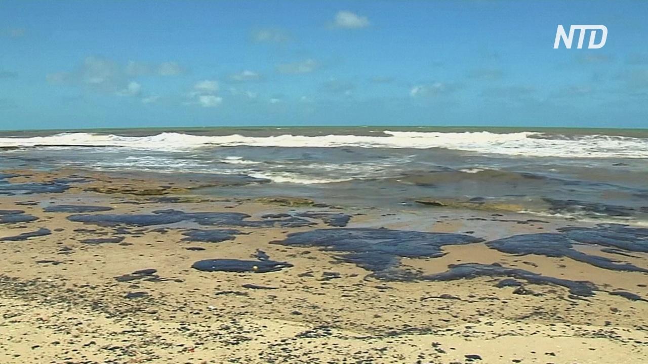 Нефть, покрывшая 1500 км пляжей Бразилии, может быть из Венесуэлы