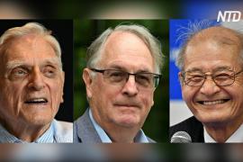 Нобелевскую премию по химии дали за развитие литий-ионных батарей