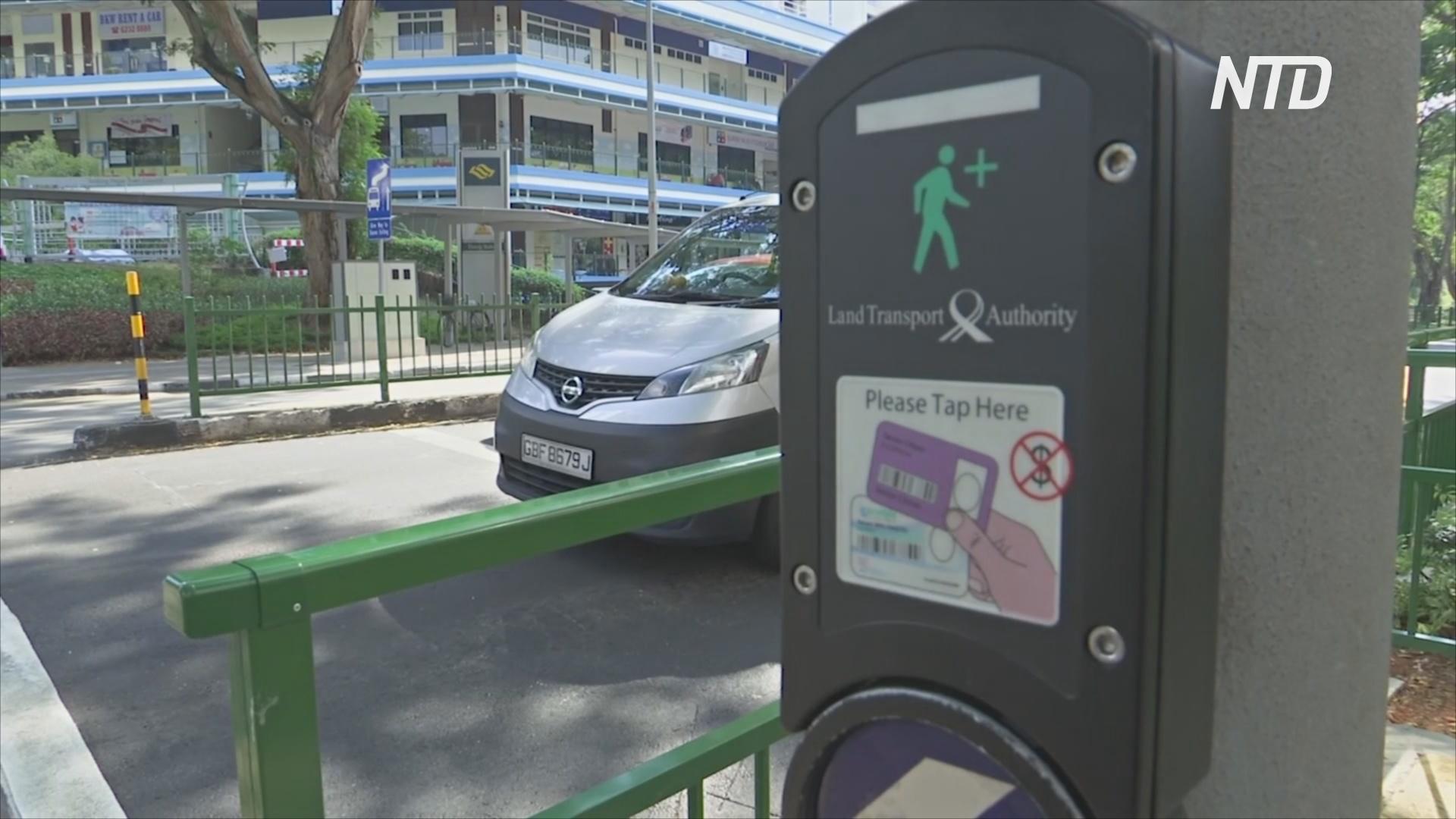 Успеть перейти улицу: «умные» светофоры в Сингапуре помогают пожилым
