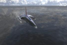 Беспилотный тримаран «Мейфлауэр» повторит путешествие пилигримов
