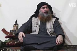 Дональд Трамп – о лидере ИГИЛ: «Он умер как собака»