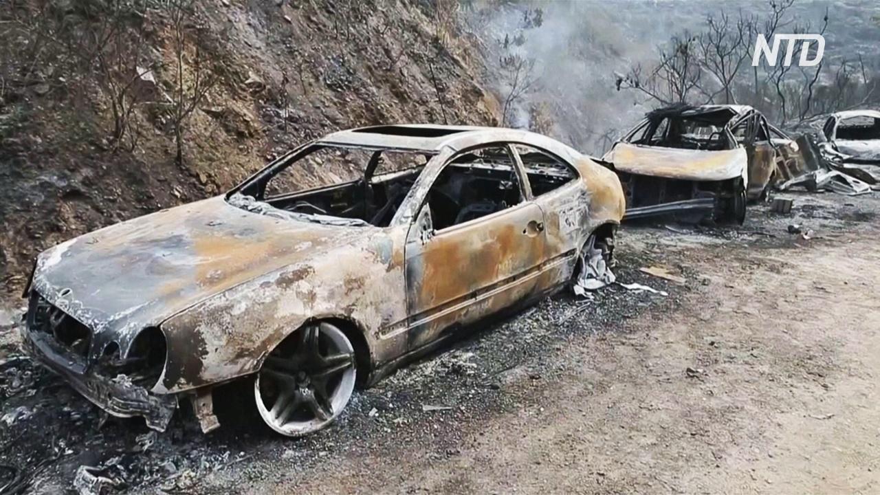 В Ливане горят леса, есть жертвы