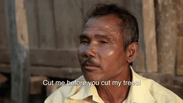 2019 10 03 143055 - Индиец в одиночку сажает лес 40 лет