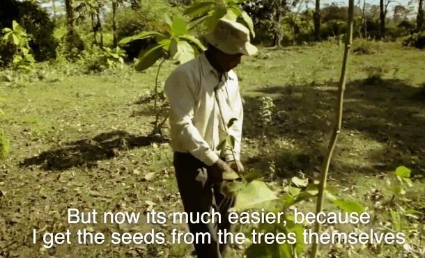Индиец в одиночку сажает лес 40 лет