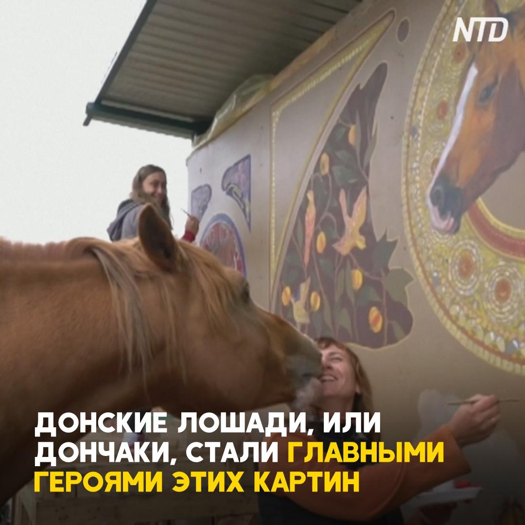 Донских лошадей рисуют на стенах фермы