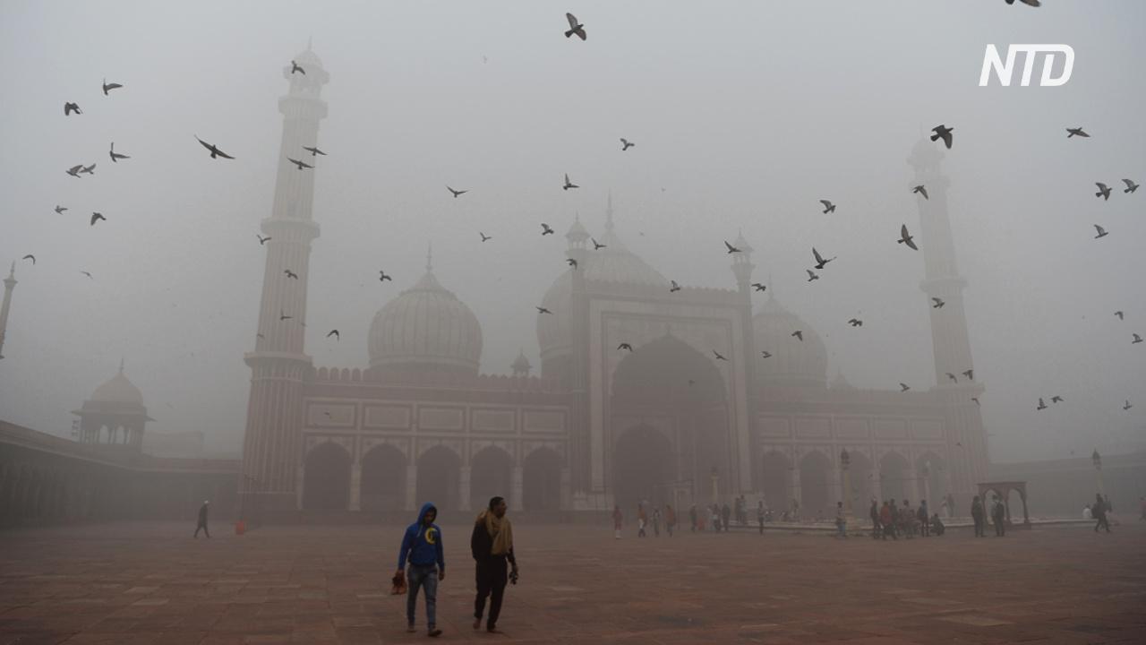 Подобно выкуриванию 50 сигарет в день: Нью-Дели окутал густой смог