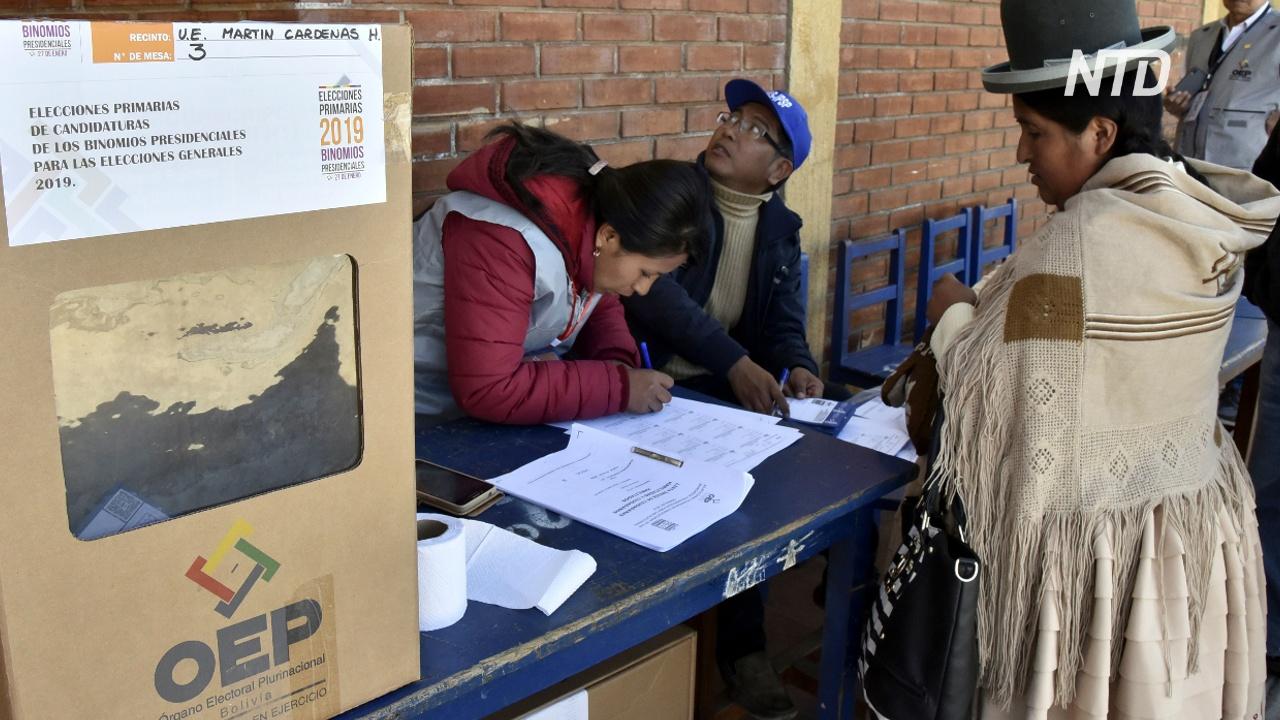 ОАГ начала проверять результаты президентских выборов в Боливии