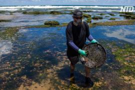 Нефть на бразильские берега могла попасть с греческого танкера